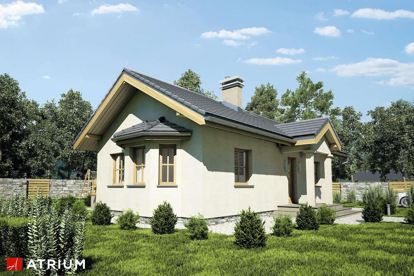 Projekty domów - Projekt domu parterowego TANGO III - wizualizacja 2