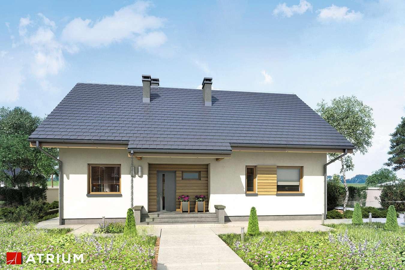 Projekt domu z poddaszem NEO X - wizualizacja 1
