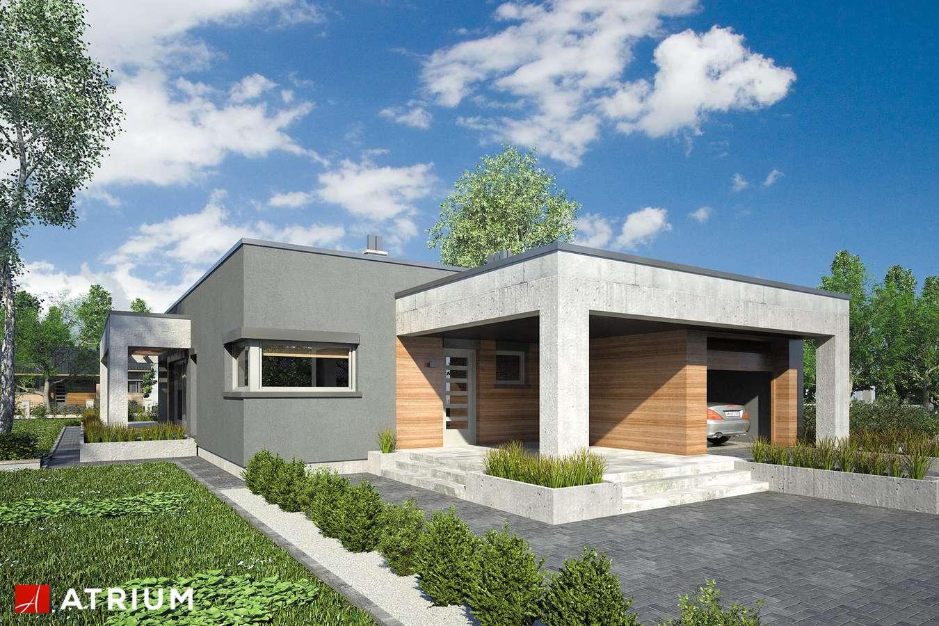 Projekty domów - Projekt domu parterowego SARDYNIA VIII - wizualizacja 1