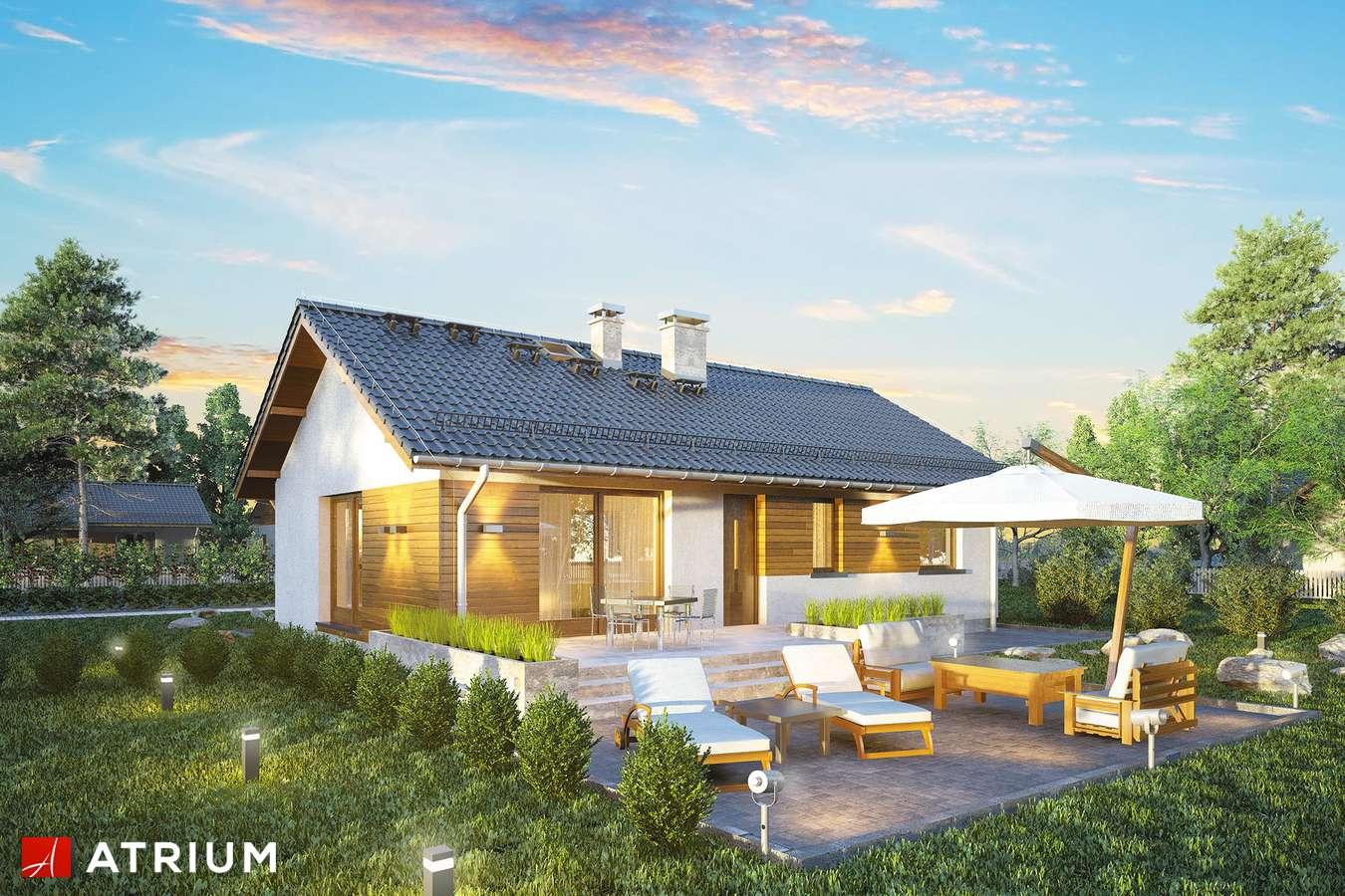 Projekty domów - Projekt domu parterowego AURORA MIDI - wizualizacja 1