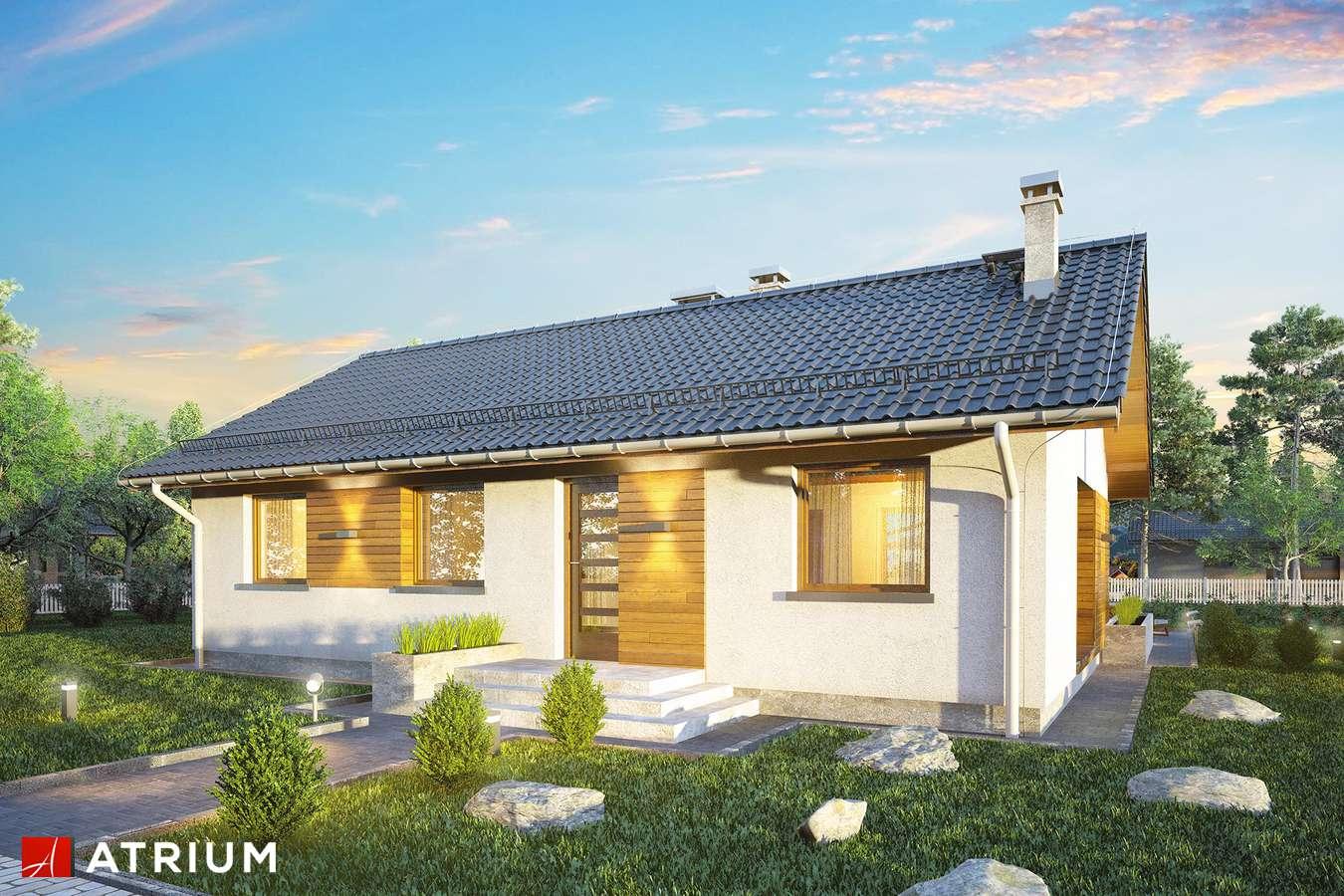 Projekty domów - Projekt domu parterowego AURORA MIDI - wizualizacja 2