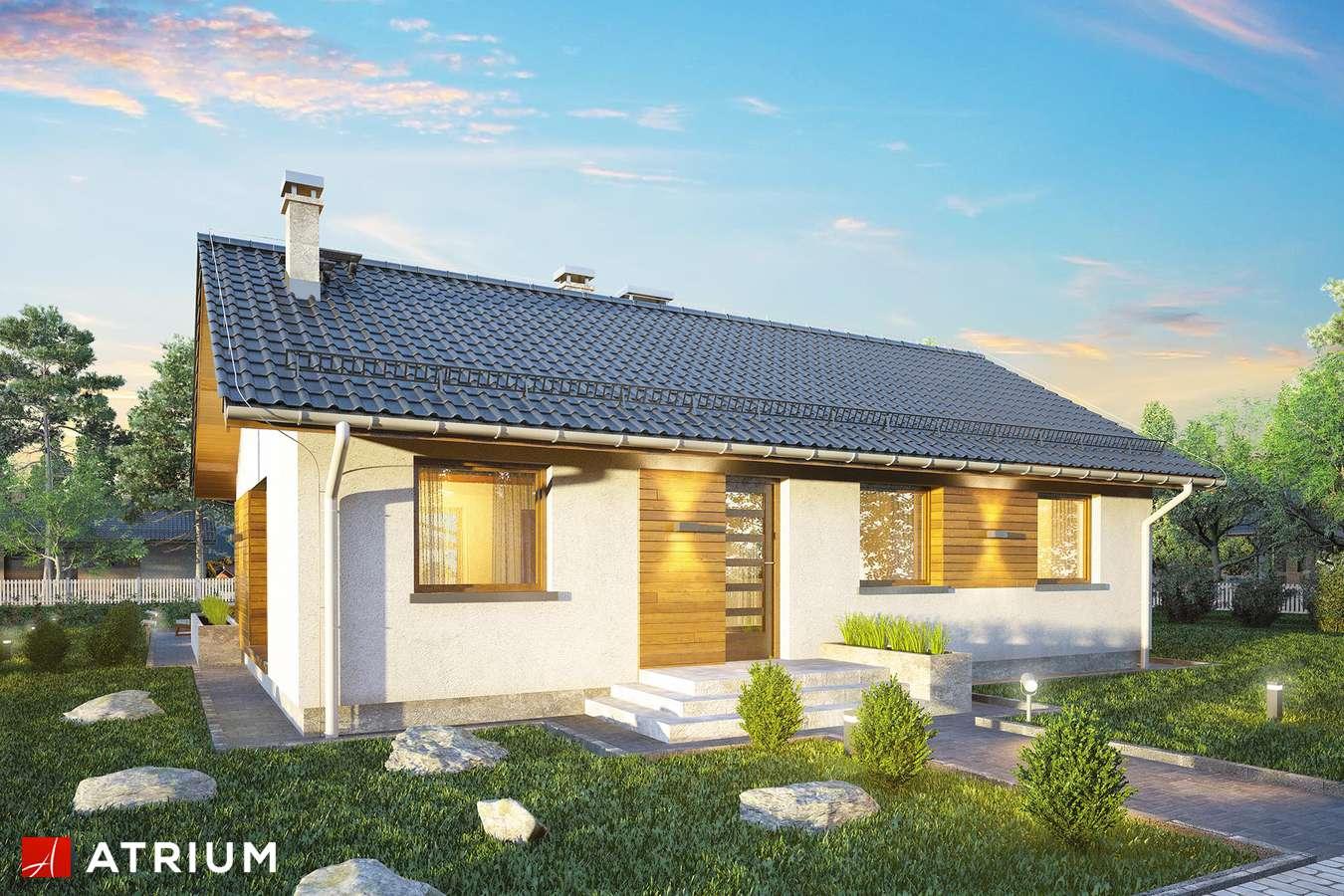 Projekty domów - Projekt domu parterowego AURORA MIDI - wizualizacja 2 - wersja lustrzana