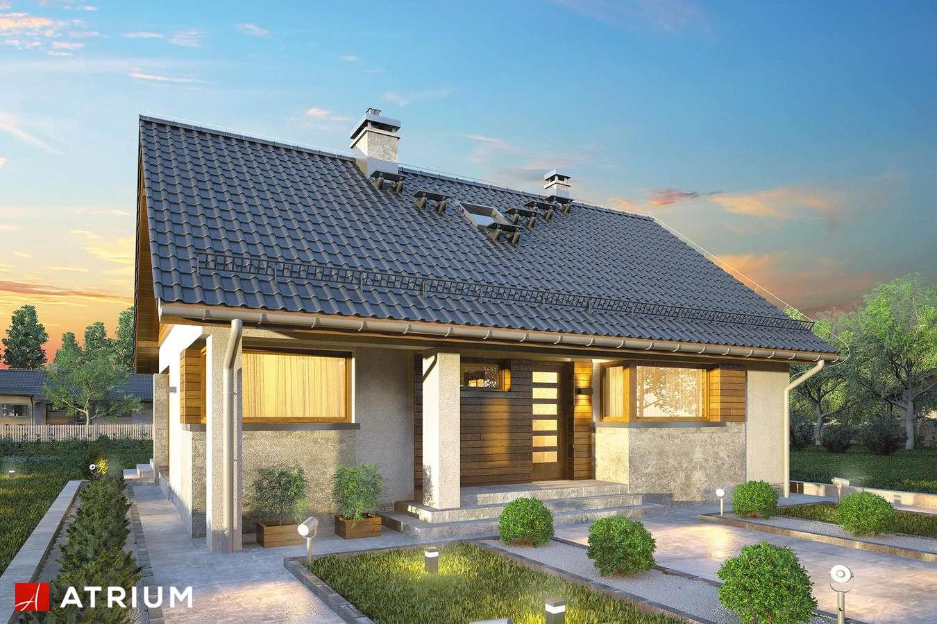 Projekty domów - Projekt domu parterowego RICARDO X LIFT - wizualizacja 1 - wersja lustrzana
