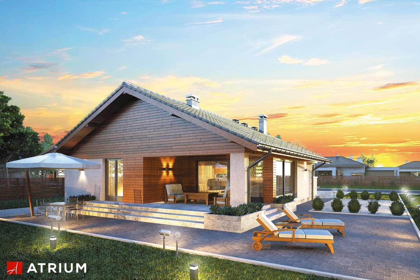 Projekty domów - Projekt domu parterowego PLISZKA - wizualizacja 2