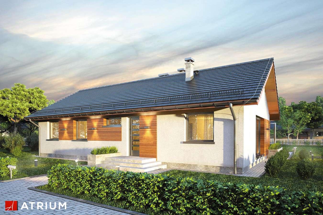 Projekty domów - Projekt domu parterowego AURORA MAXI - wizualizacja 1