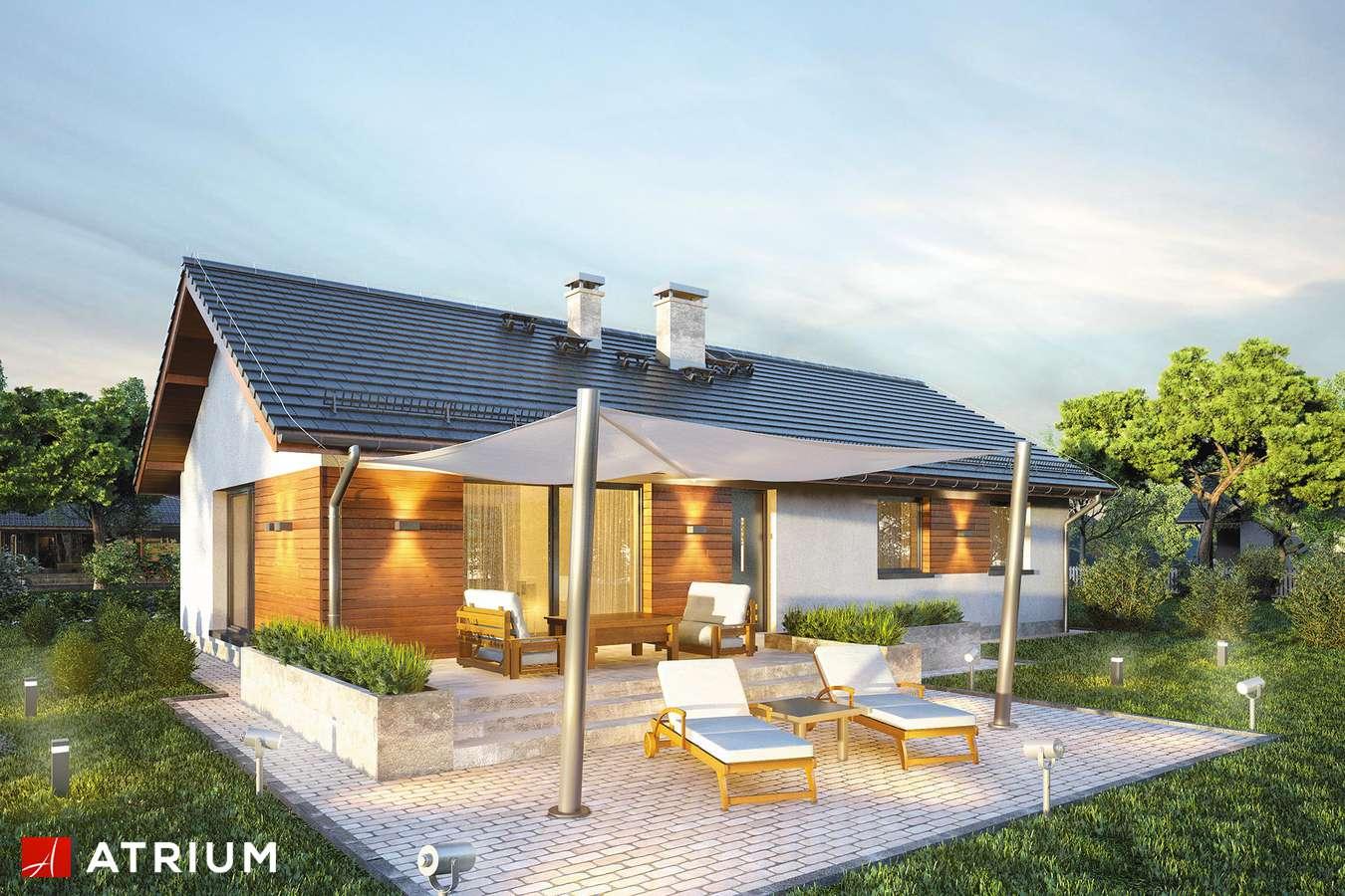 Projekty domów - Projekt domu parterowego AURORA MAXI - wizualizacja 2