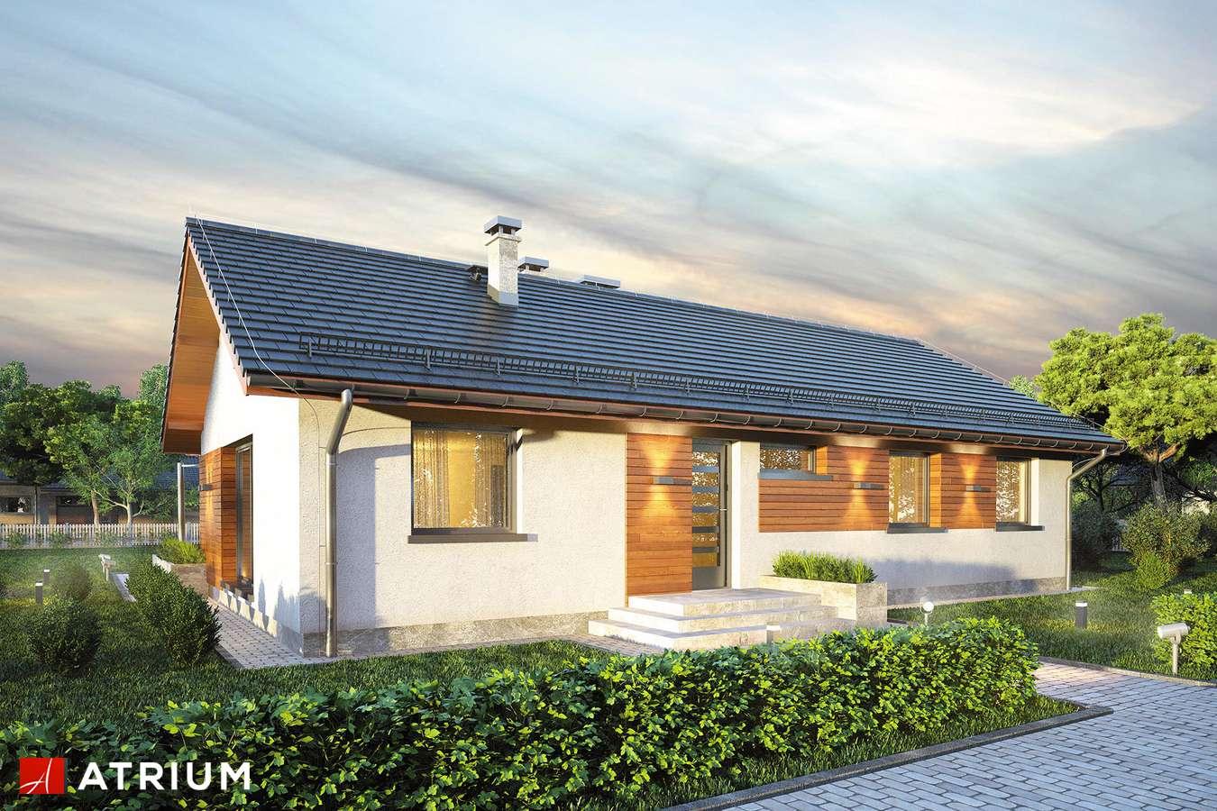 Projekty domów - Projekt domu parterowego AURORA MAXI - wizualizacja 1 - wersja lustrzana