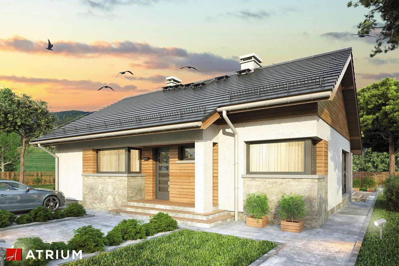 Projekty domów - Projekt domu parterowego ROY II - wizualizacja 1