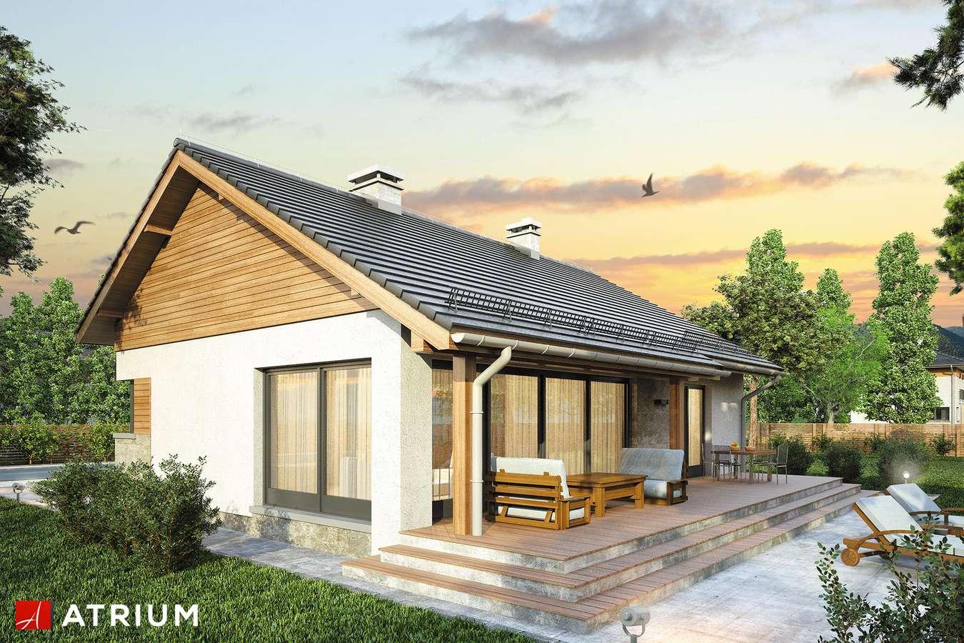 Projekty domów - Projekt domu parterowego ROY II - wizualizacja 2