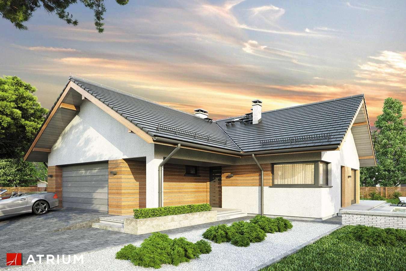 Projekty domów - Projekt domu parterowego OSTOJA IX - wizualizacja 1 - wersja lustrzana