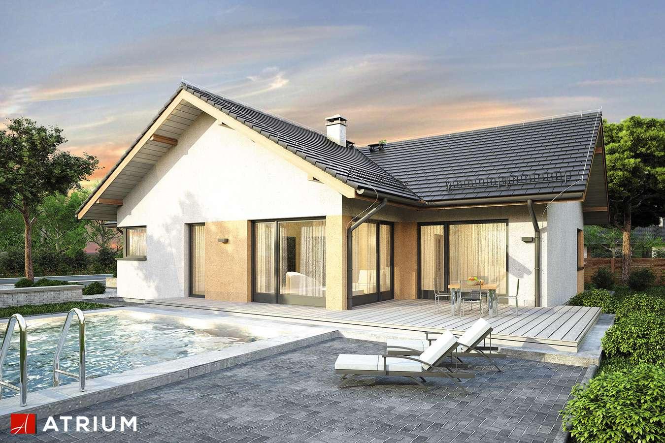 Projekty domów - Projekt domu parterowego OSTOJA IX - wizualizacja 2 - wersja lustrzana