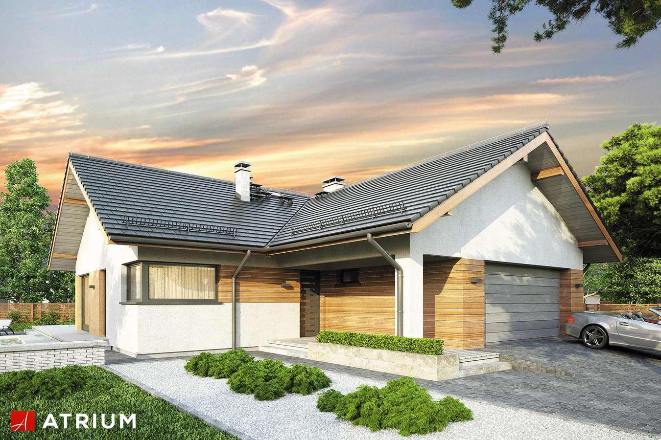 Projekty domów - Projekt domu parterowego OSTOJA IX - wizualizacja 1