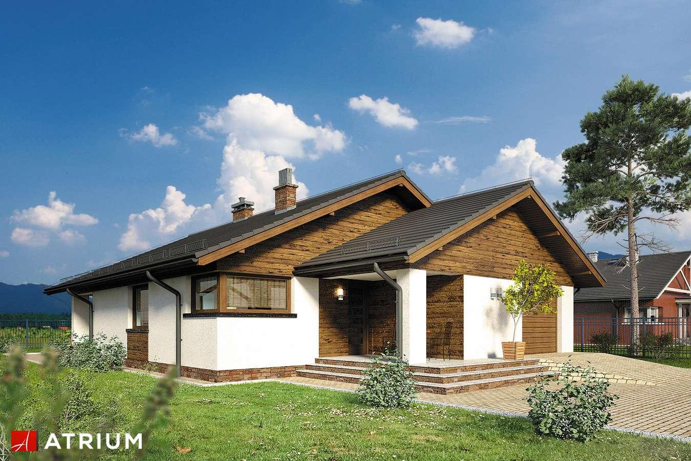 Projekty domów - Projekt domu parterowego PELIKAN XIX - wizualizacja 1