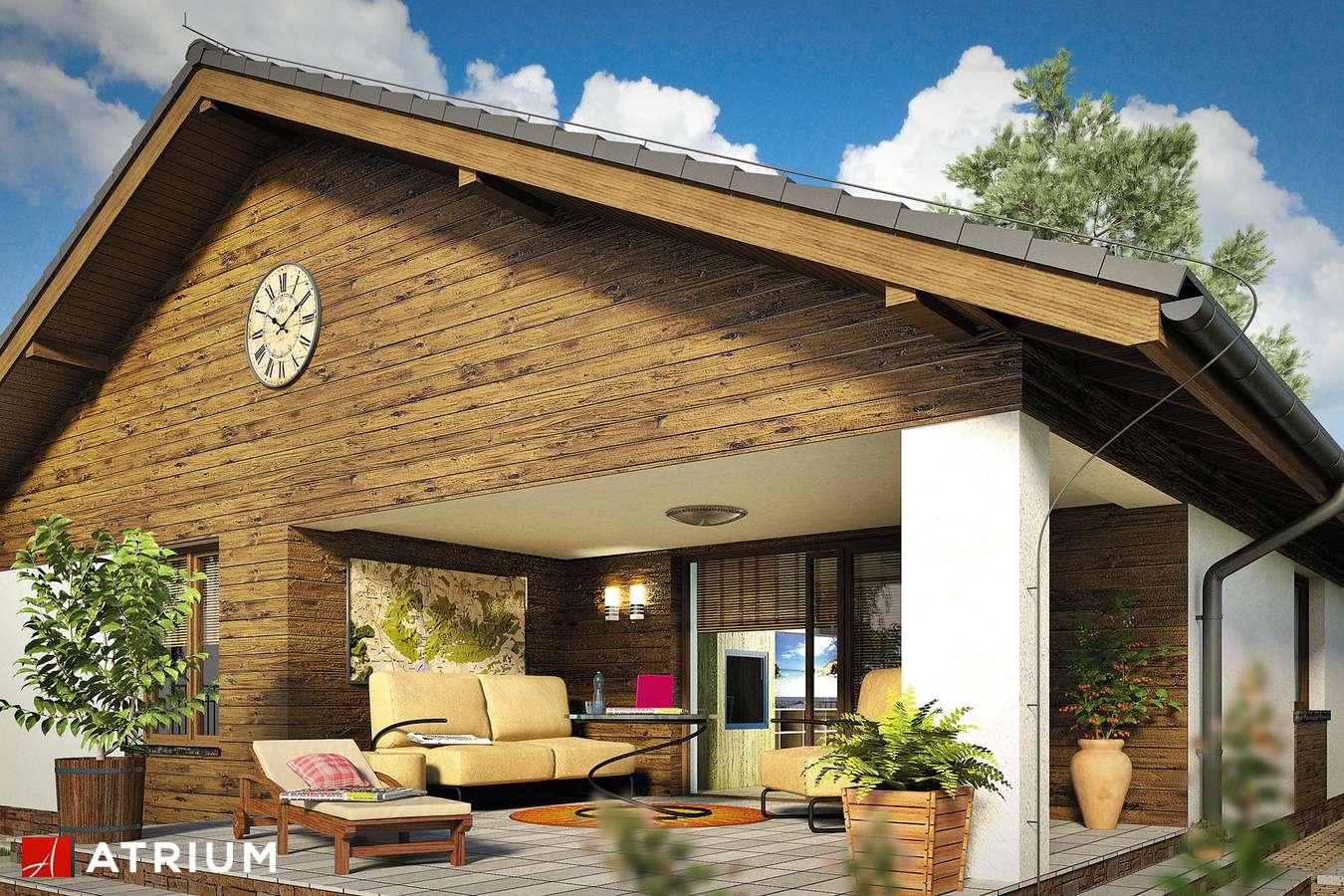 Projekty domów - Projekt domu parterowego PELIKAN XIX - wizualizacja 2