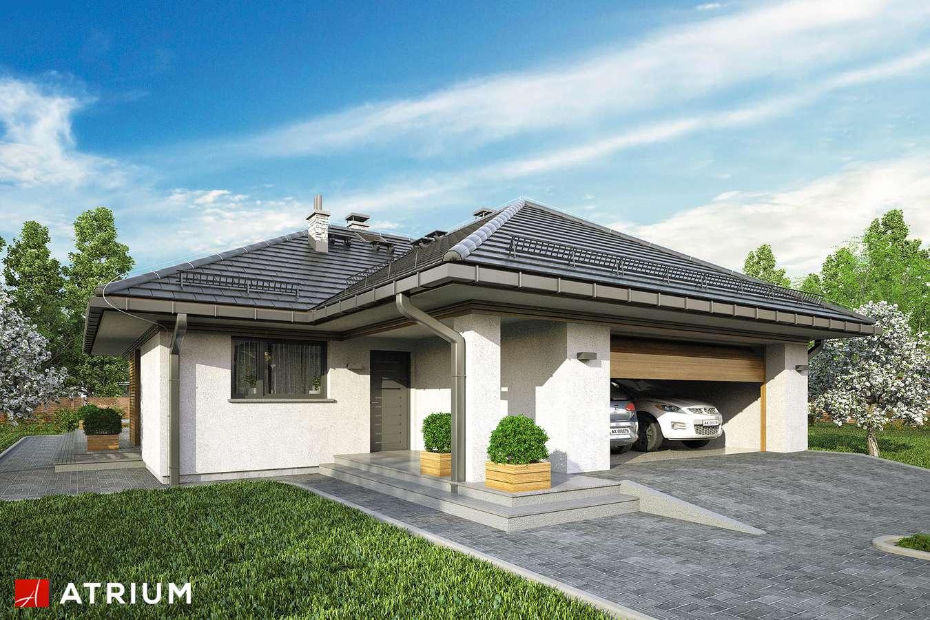 Projekty domów - Projekt domu parterowego WINONA II - wizualizacja 1