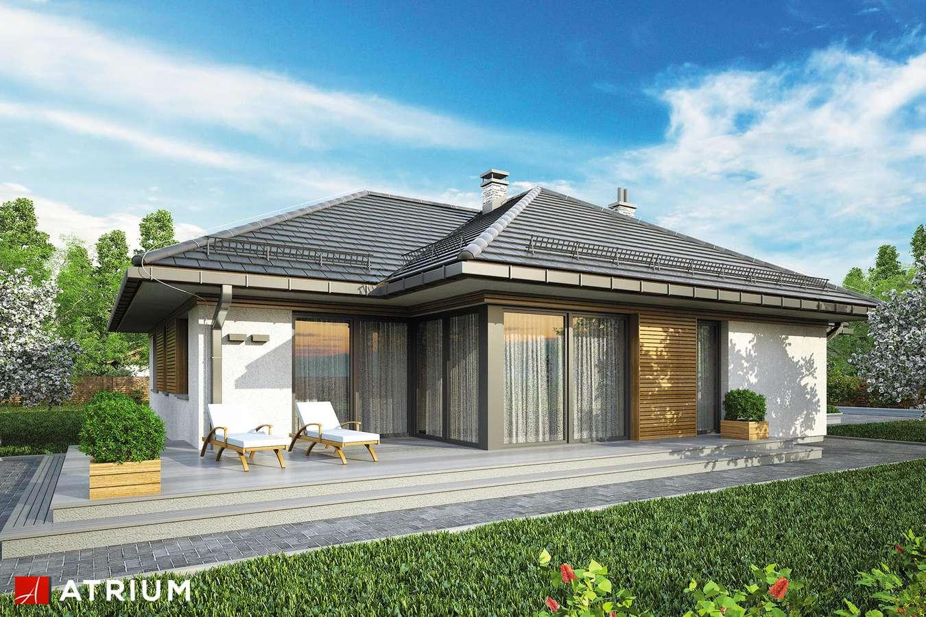 Projekty domów - Projekt domu parterowego WINONA II - wizualizacja 2