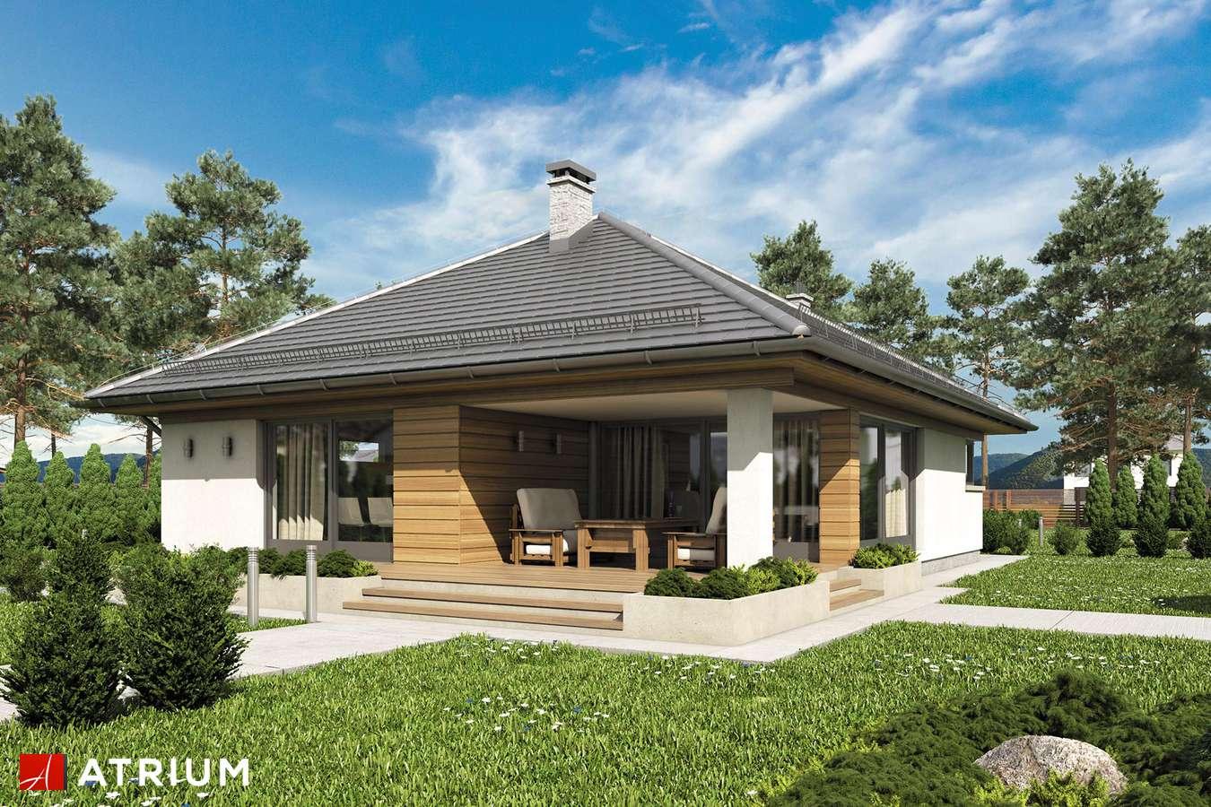 Projekty domów - Projekt domu parterowego MORGAN - wizualizacja 2