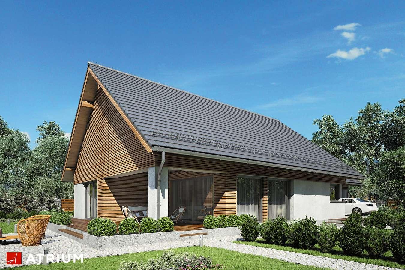 Projekty domów - Projekt domu parterowego MERLIN SP SZ - wizualizacja 2