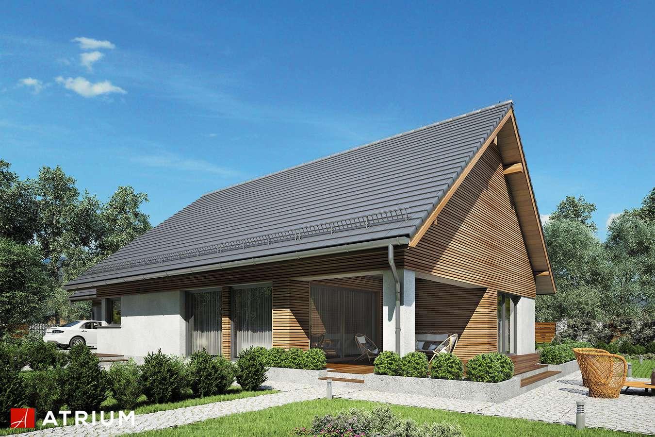 Projekty domów - Projekt domu parterowego MERLIN SP SZ - wizualizacja 2 - wersja lustrzana
