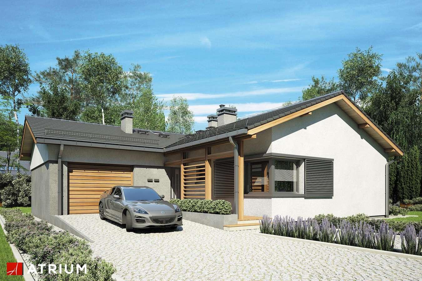Projekt domu parterowego KOLIBER - wizualizacja 1
