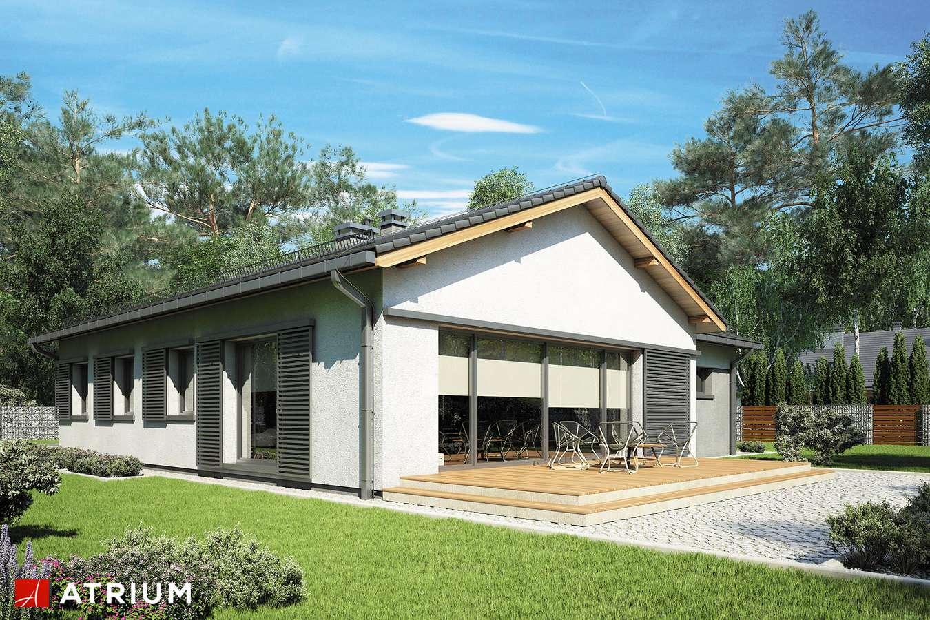Projekt domu parterowego KOLIBER - wizualizacja 2