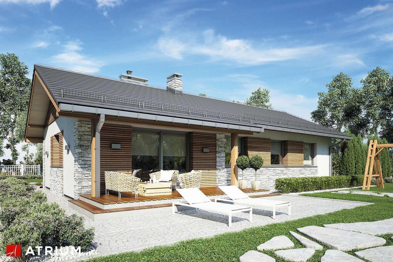Projekty domów - Projekt domu parterowego ALBERTO - wizualizacja 1