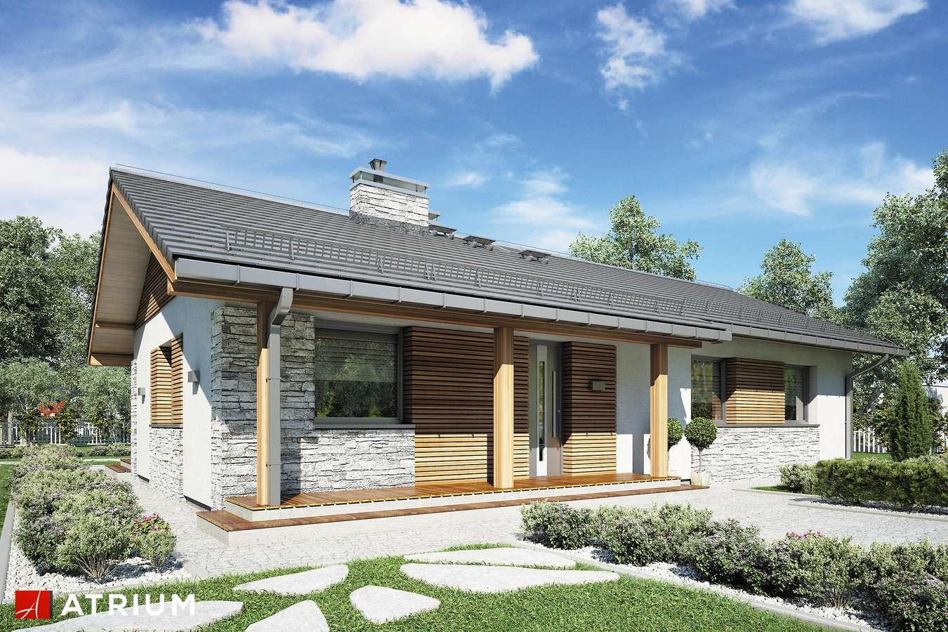 Projekty domów - Projekt domu parterowego ALBERTO - wizualizacja 2 - wersja lustrzana