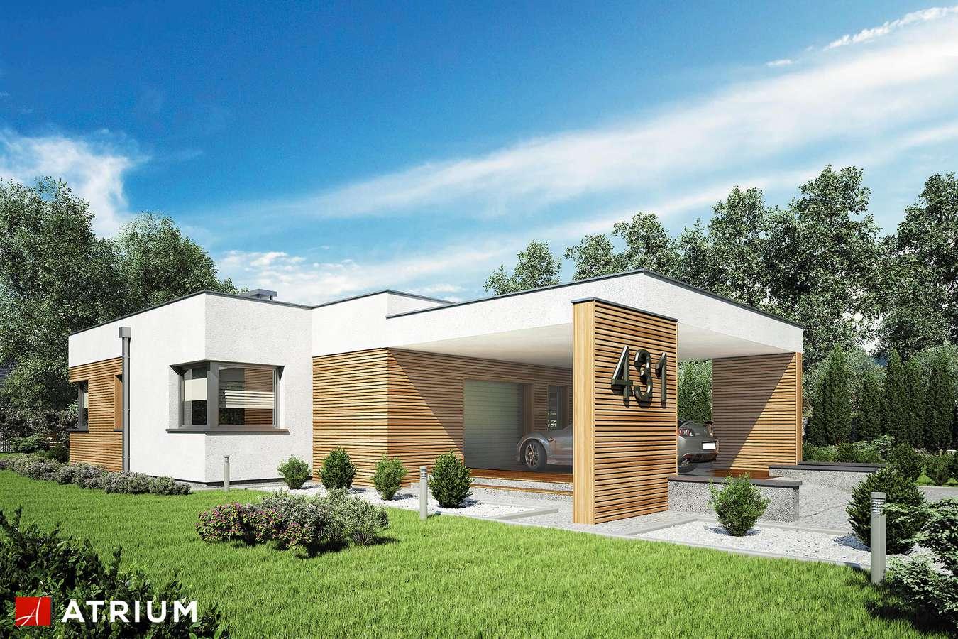 Projekty domów - Projekt domu parterowego IBIZA II - wizualizacja 1