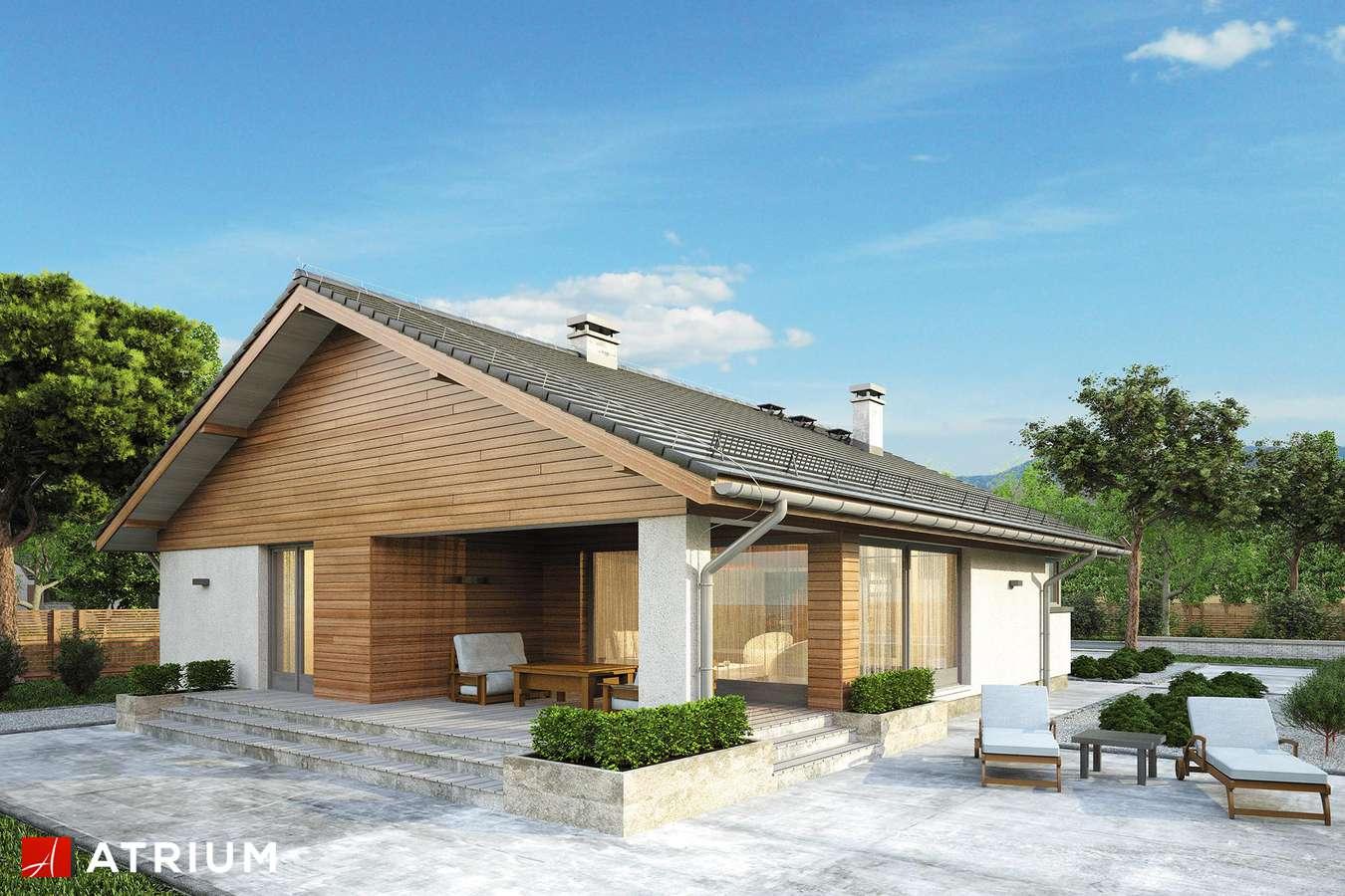 Projekty domów - Projekt domu parterowego PLISZKA III - wizualizacja 1