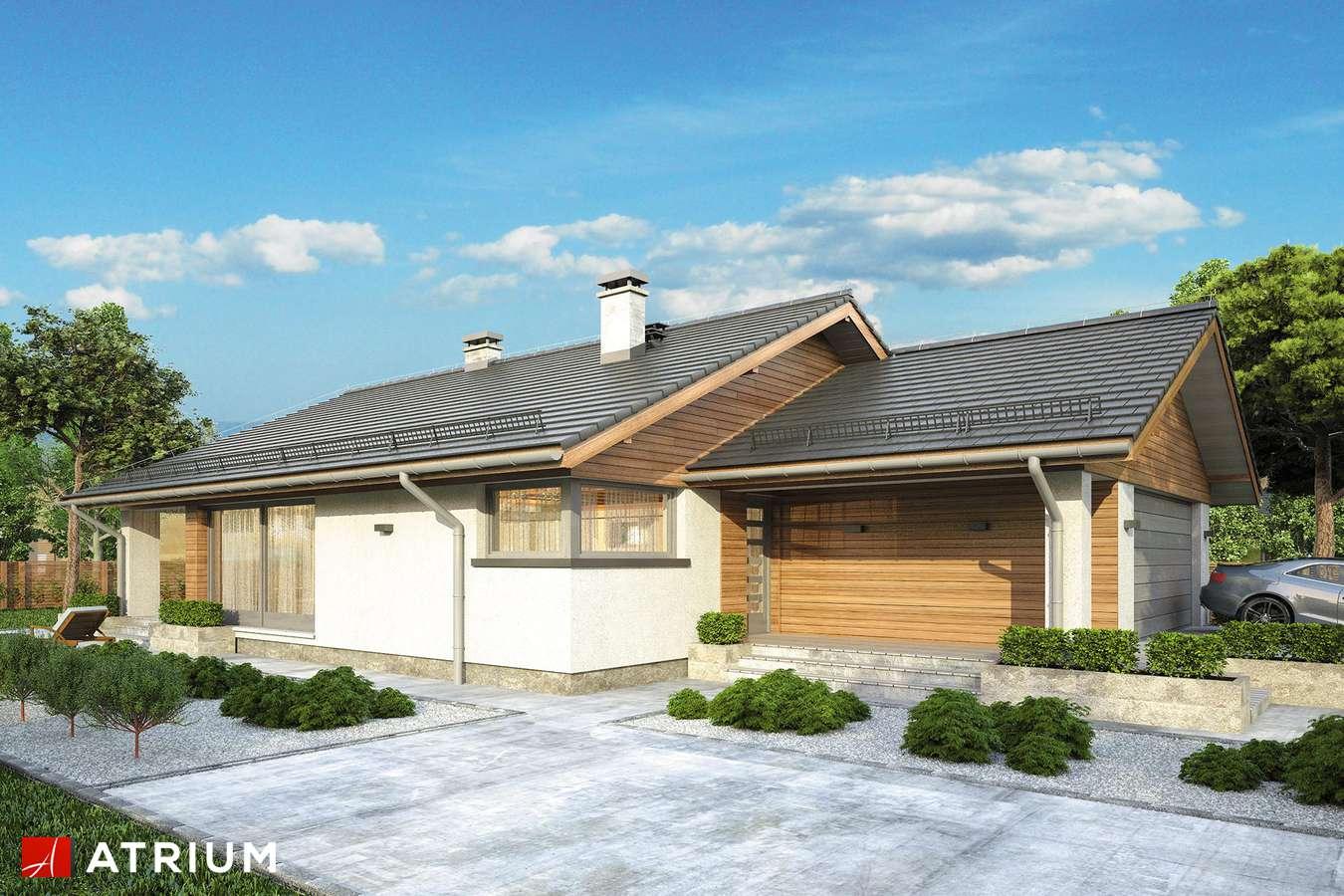 Projekty domów - Projekt domu parterowego PLISZKA III - wizualizacja 2