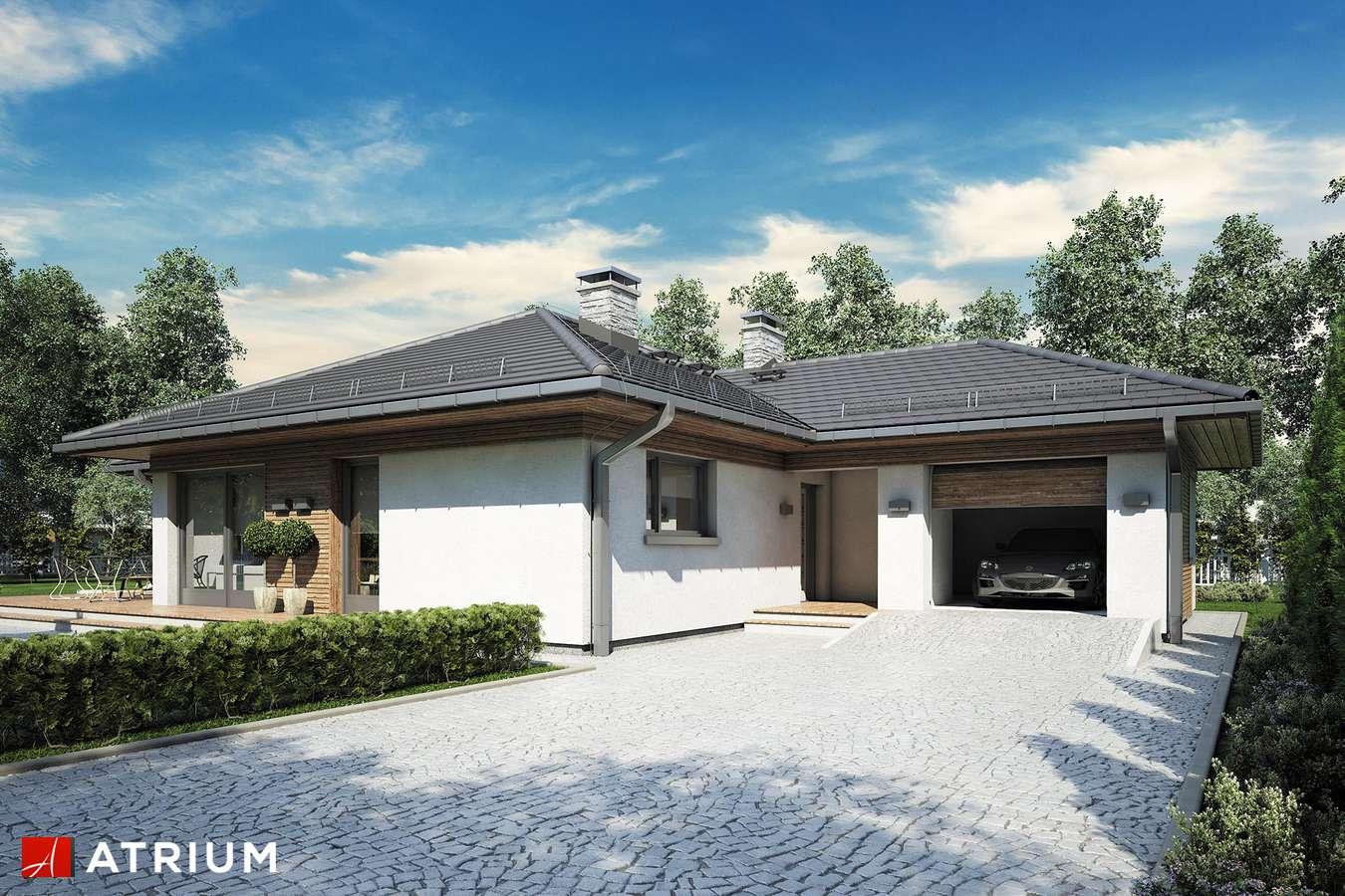 Projekty domów - Projekt domu parterowego MERIDA - wizualizacja 1