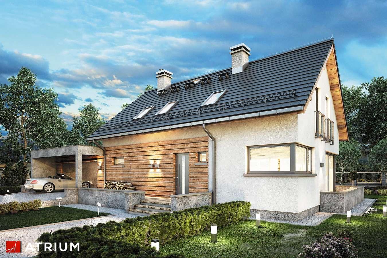Projekty domów - Projekt domu z poddaszem SALSA II - wizualizacja 2