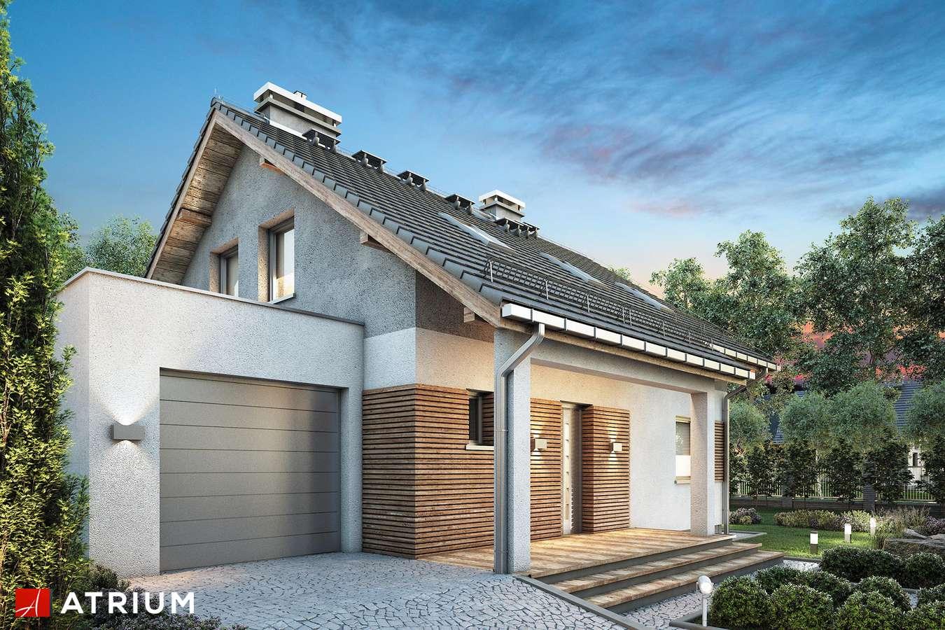 Projekty domów - Projekt domu z poddaszem OLA - wizualizacja 1
