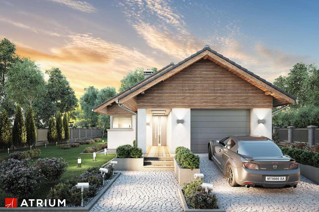 Projekty domów - Projekt domu parterowego PELIKAN SLIM - wizualizacja 1