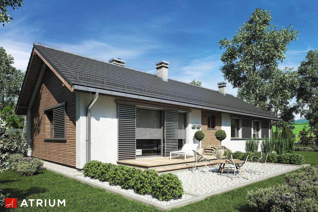 Projekty domów - Projekt domu parterowego DROPS II - wizualizacja 1