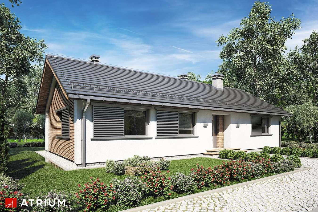 Projekty domów - Projekt domu parterowego DROPS II - wizualizacja 2