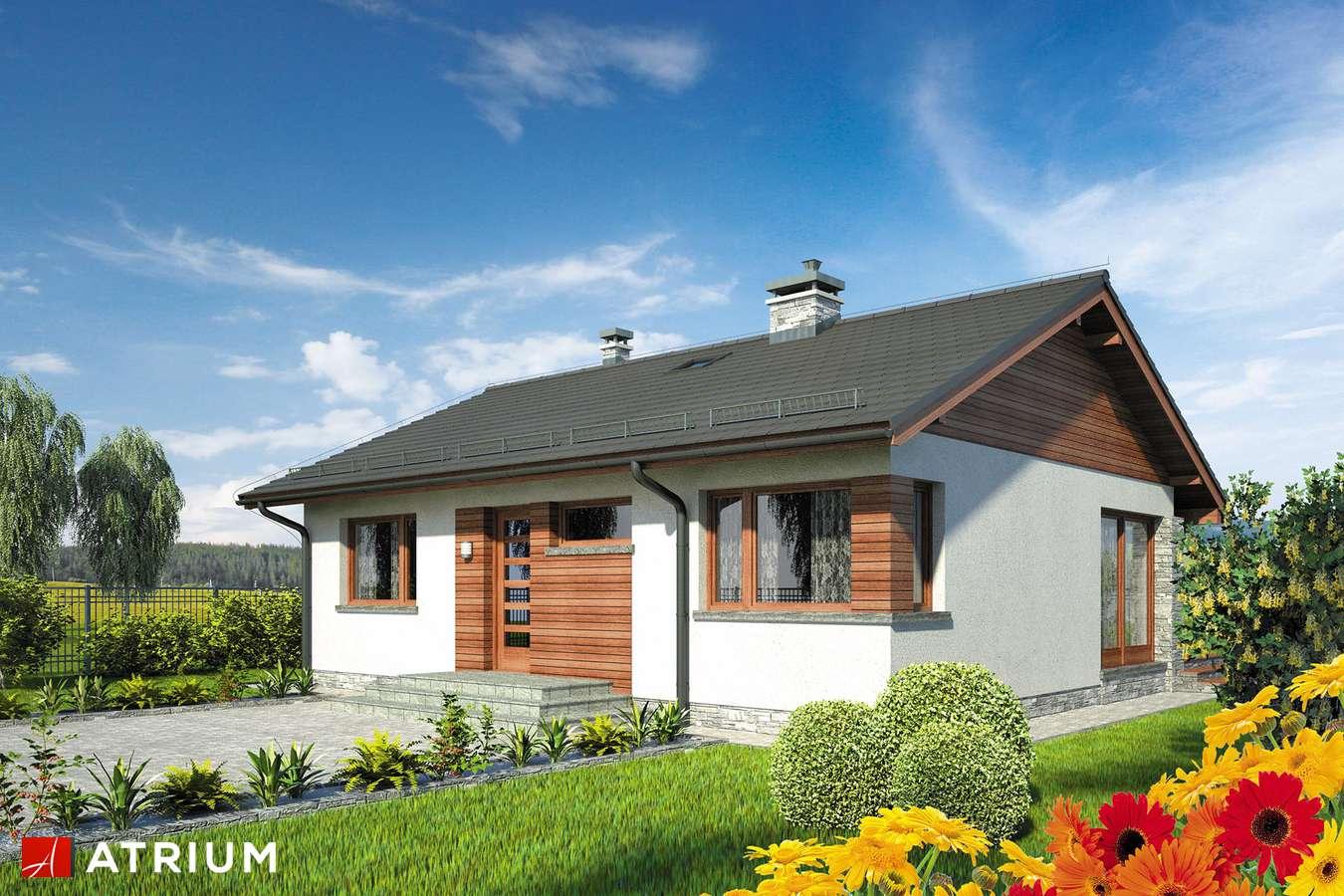 Projekty domów - Projekt domu parterowego ROY SZ - wizualizacja 1
