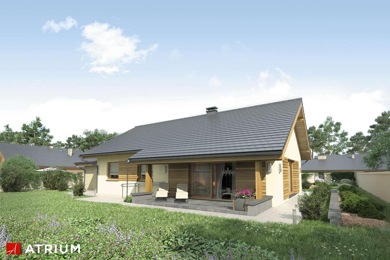 Projekty domów - Projekt domu parterowego NEO STRADA SZ - wizualizacja 1