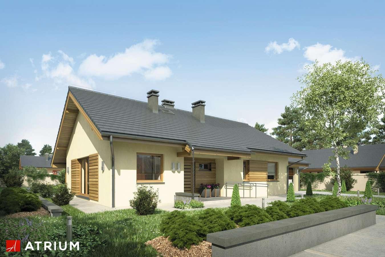 Projekty domów - Projekt domu parterowego NEO STRADA SZ - wizualizacja 2