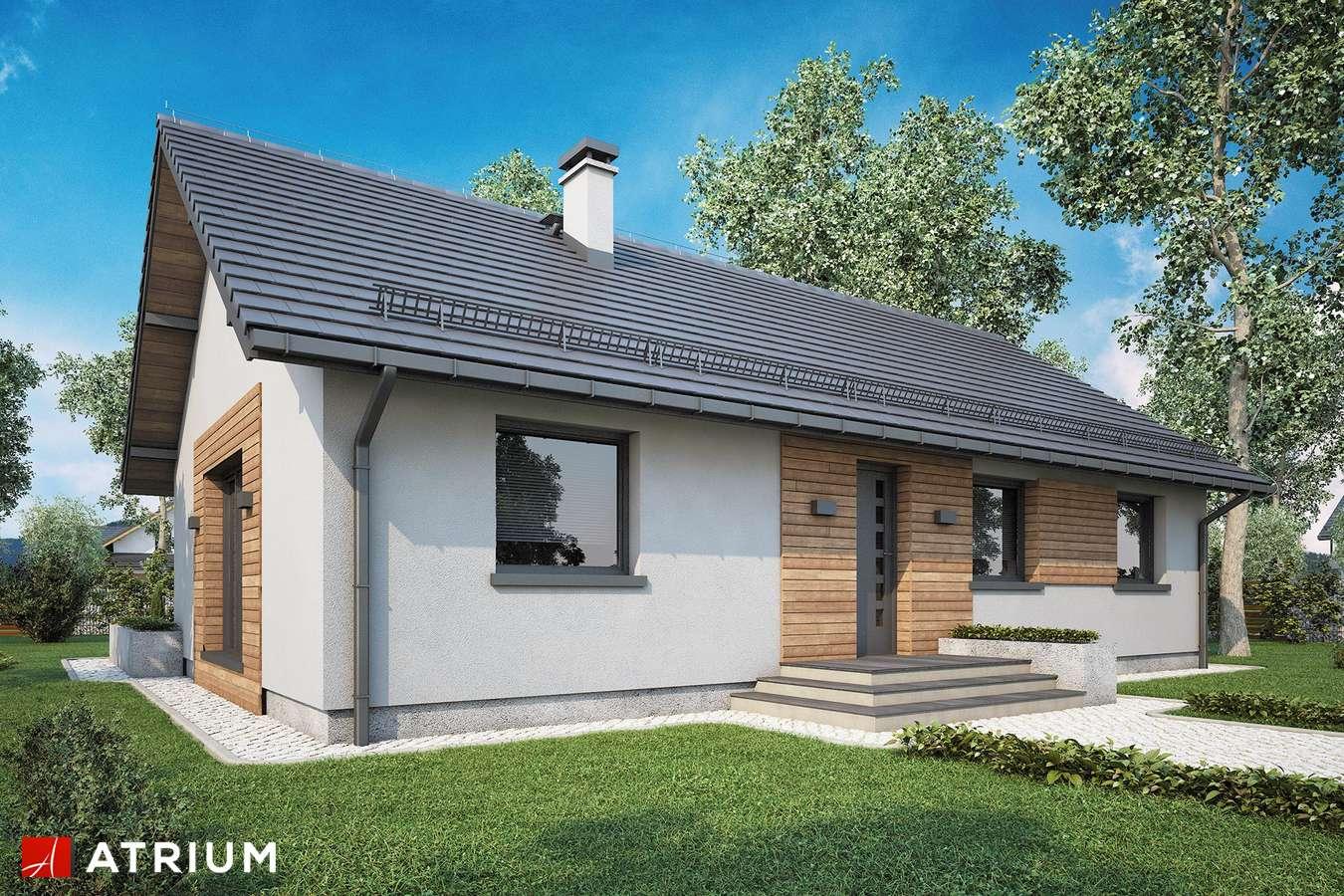 Projekty domów - Projekt domu parterowego AURORA II SZ - wizualizacja 1 - wersja lustrzana