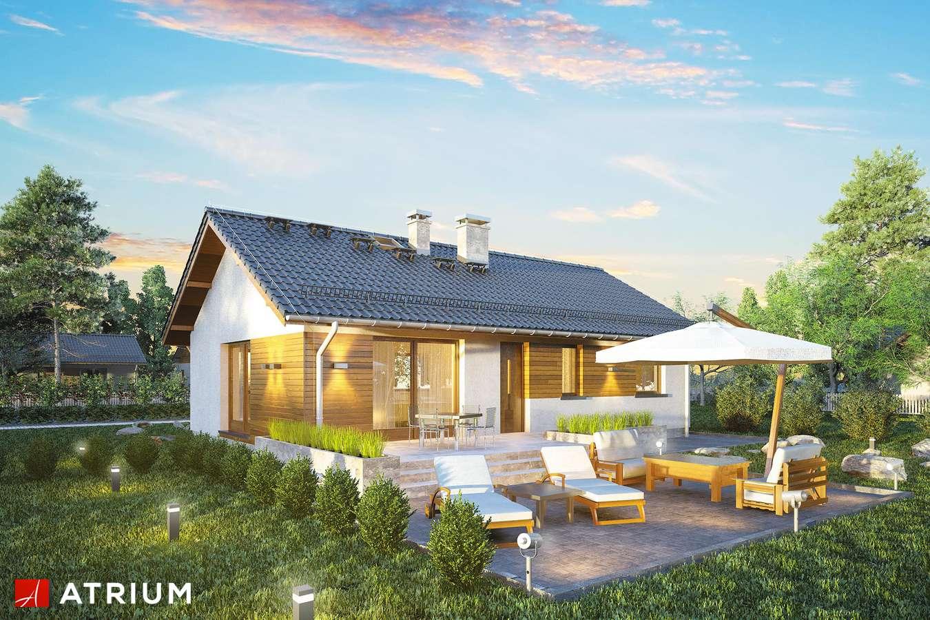 Projekty domów - Projekt domu parterowego AURORA MIDI SZ - wizualizacja 1