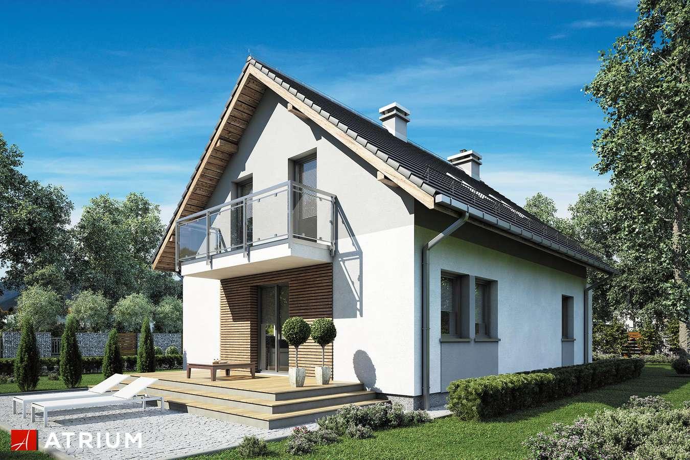 Projekty domów - Projekt domu z poddaszem SINUS - wizualizacja 2
