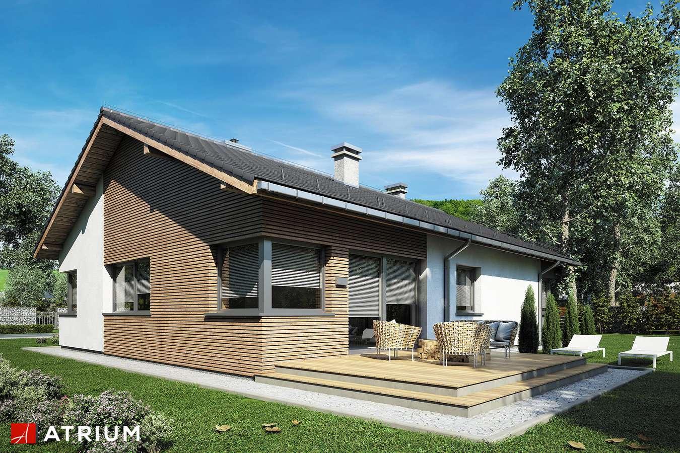 Projekty domów - Projekt domu parterowego MINORKA - wizualizacja 1