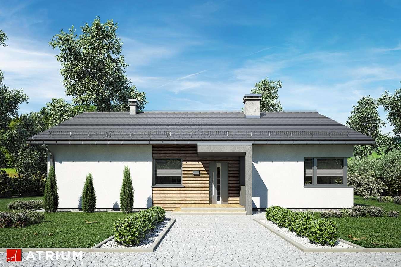 Projekty domów - Projekt domu parterowego MINORKA - wizualizacja 2