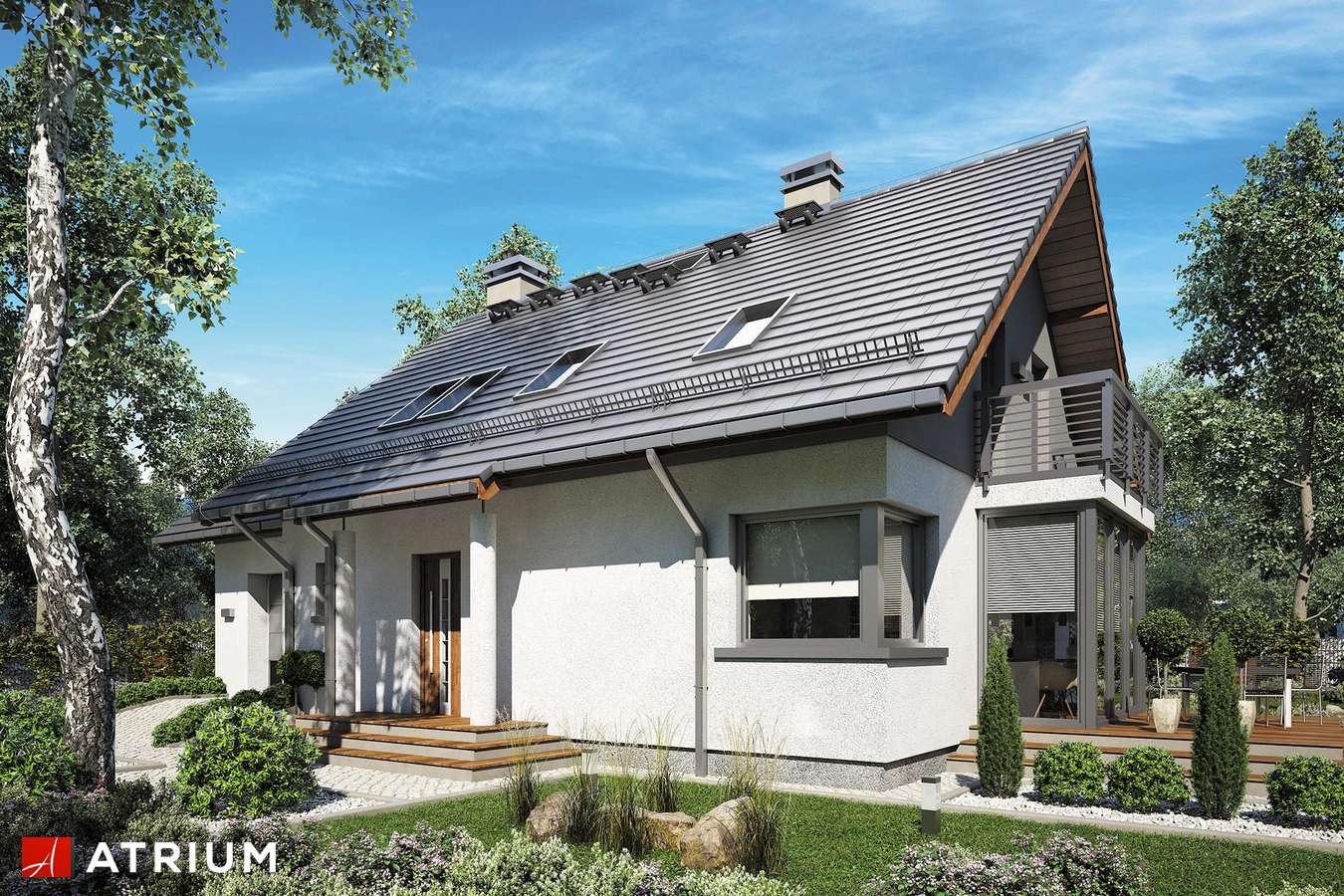 Projekty domów - Projekt domu z poddaszem SABINA II - wizualizacja 1