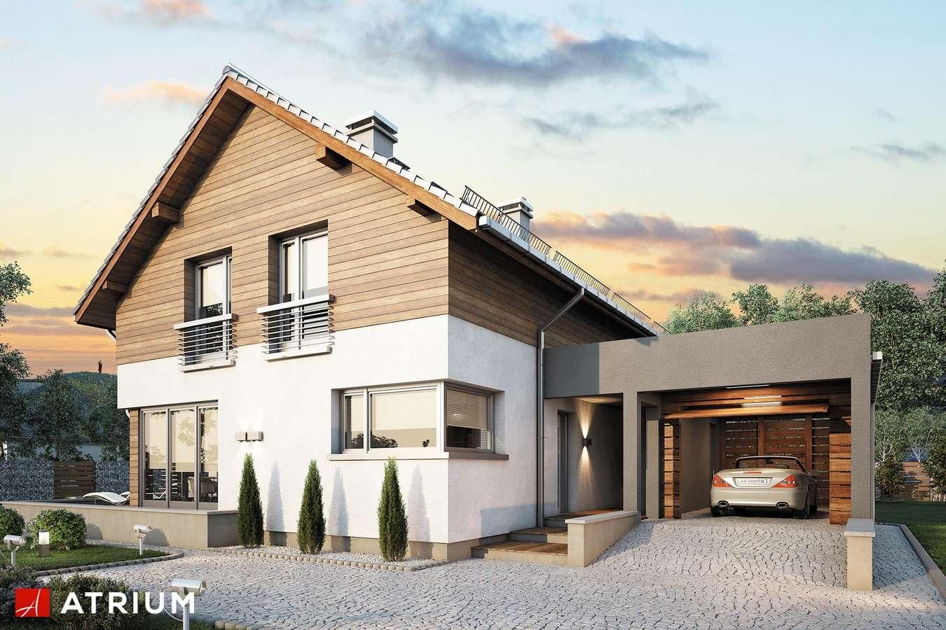 Projekty domów - Projekt domu z poddaszem SAMBA PLUS - wizualizacja 1