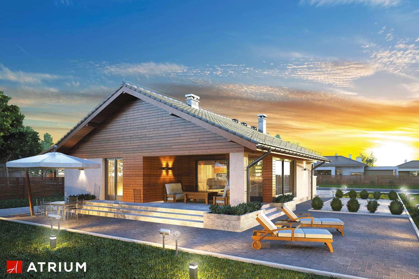Projekty domów - Projekt domu parterowego PLISZKA IV - wizualizacja 1