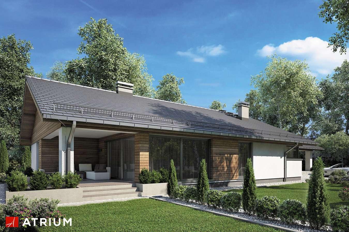 Projekty domów - Projekt domu parterowego KOS MAXI - wizualizacja 1