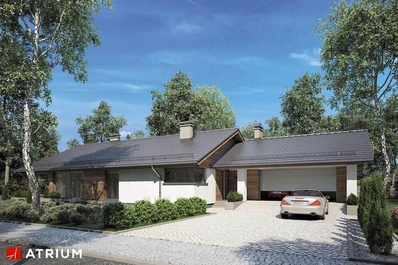 Projekty domów - Projekt domu parterowego KOS MAXI - wizualizacja 2