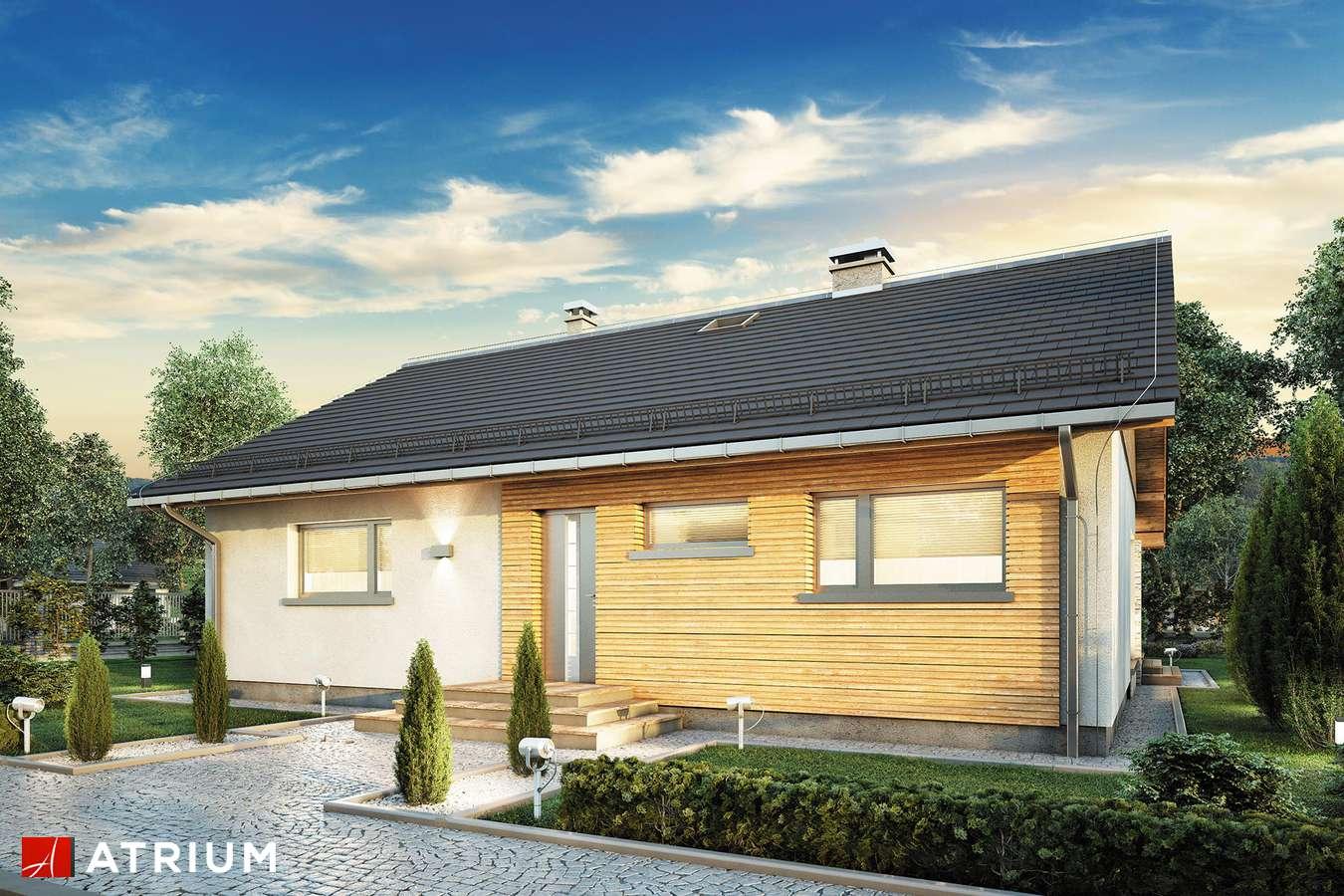 Projekty domów - Projekt domu parterowego ROY III - wizualizacja 1